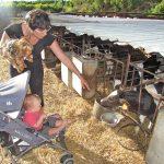Visita la granja en La Litera